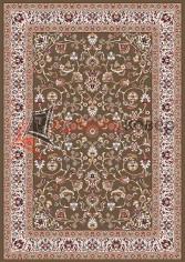 SHAHREZA D210 BROWN-2